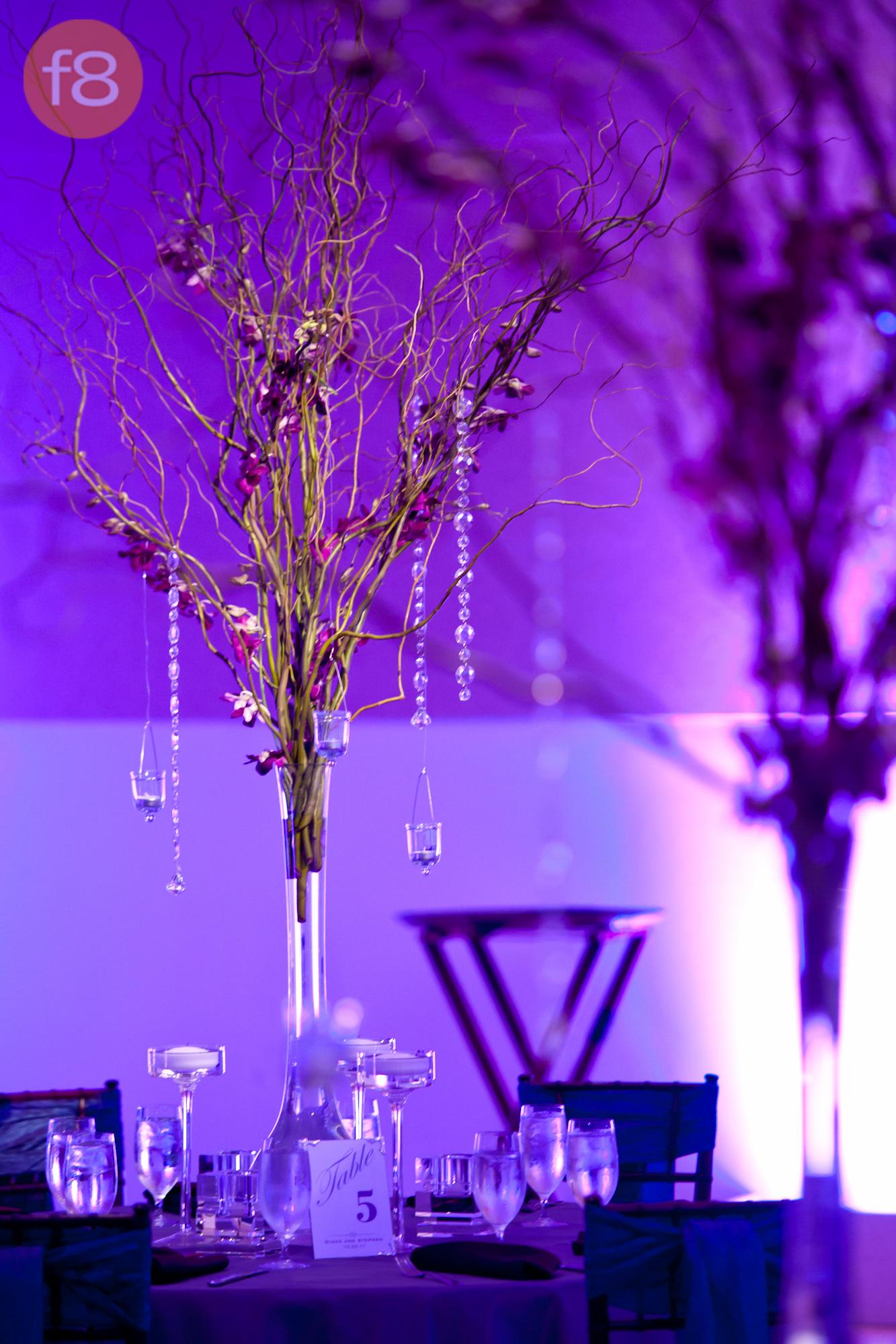 Dallas Wedding Uplighting Pinspotting